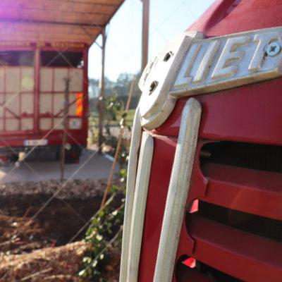 Camions anciens et espaces verts : au cœur des Transports Cordier
