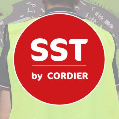 Sécurité et Santé au travail by Cordier